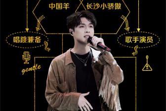 张艺兴改编《刘海砍樵》,还有什么歌是节目组不敢放的?